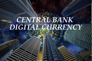 IMF perspective on Central Bank Digital Currency (CBDC)
